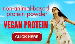 TheBestVeganProtein